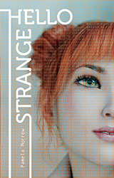 Hello Strange by Pamela Morrow