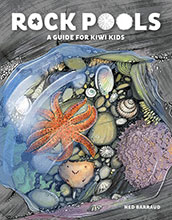Rock Pools – A Guide for Kiwi Kids by Ned Barraud