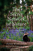 The Secret Network of Nature by Peter Wohlleben.