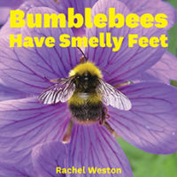 Bumblebees Have Smelly Feet by Rachel Weston
